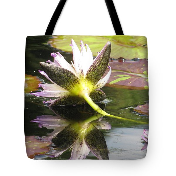 Tote Bag featuring the photograph Waterlily by Alfred Ng