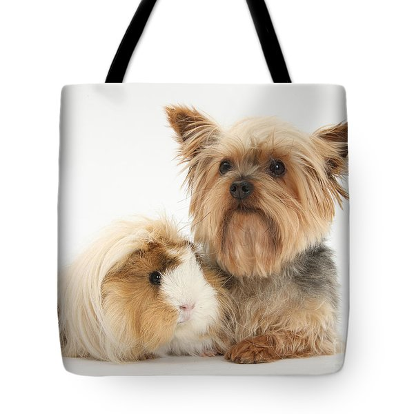 Yorkshire Terrier And Guinea Pig Tote Bag by Mark Taylor
