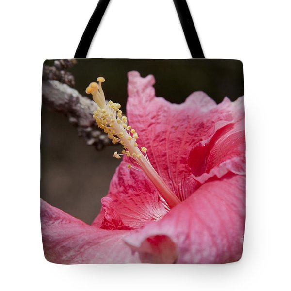 Art By Nature Tote Bag by Sharon Mau