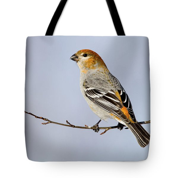 Female Pine Grosbeak Tote Bag