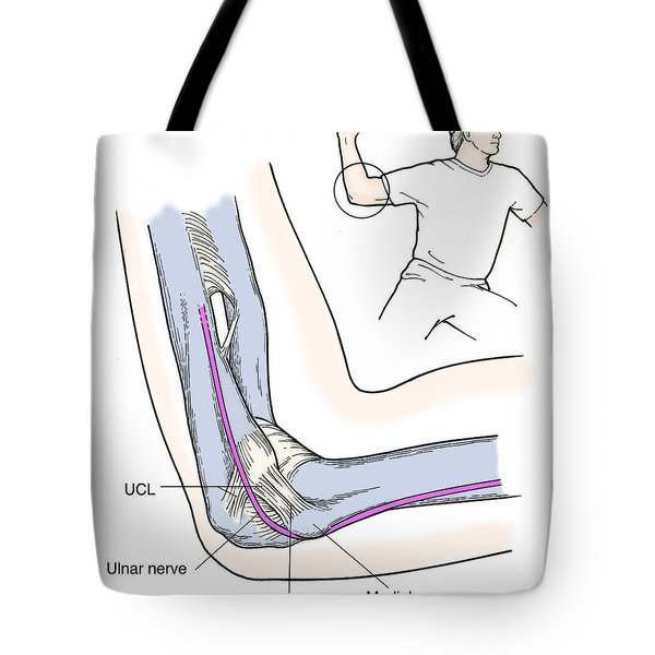 Illustration Of Elbow Ligaments Tote Bag by Science Source