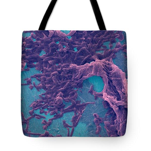 Legionella Pneumophila Sem Tote Bag by Science Source