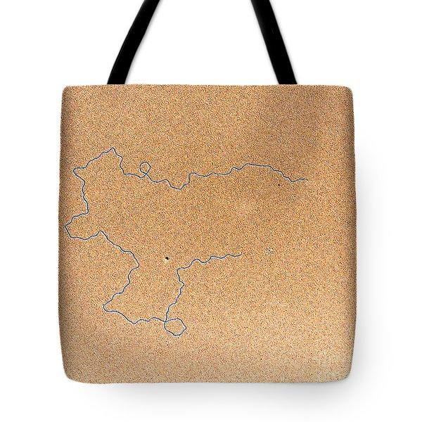 Tem Of Dna Tote Bag