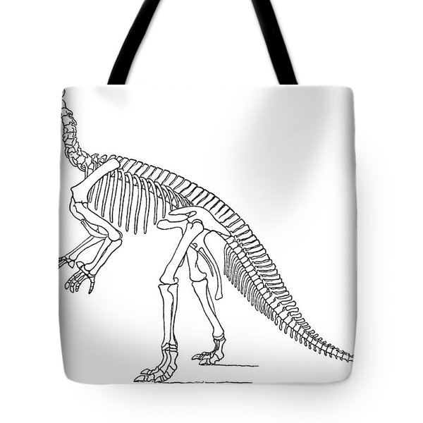Iguanodon, Mesozoic Dinosaur Tote Bag by Science Source