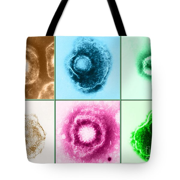 Various Forms Of Herpes Simplex Virus Tote Bag by Science Source