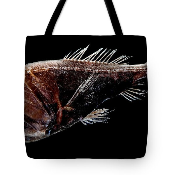 Fangtooth Tote Bag by Dant� Fenolio