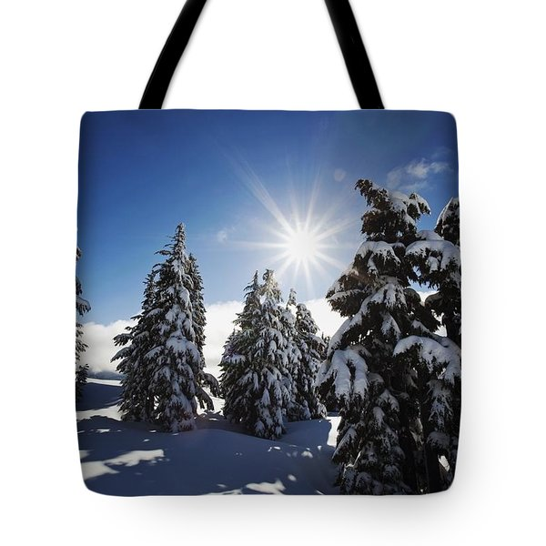 Oregon Cascades, Oregon, United States Tote Bag by Craig Tuttle
