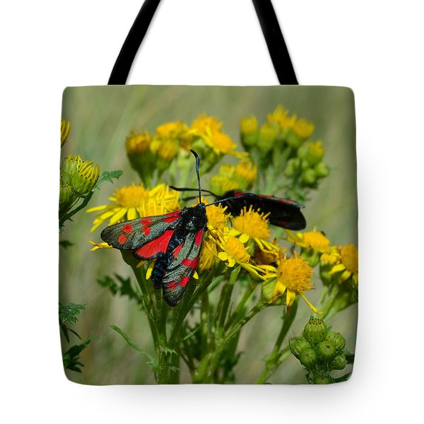 Tote Bag featuring the photograph 6 Spot Burnet by Barbara Walsh