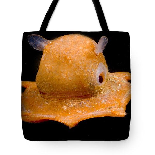 Flapjack Octopus Tote Bag by Dante Fenolio