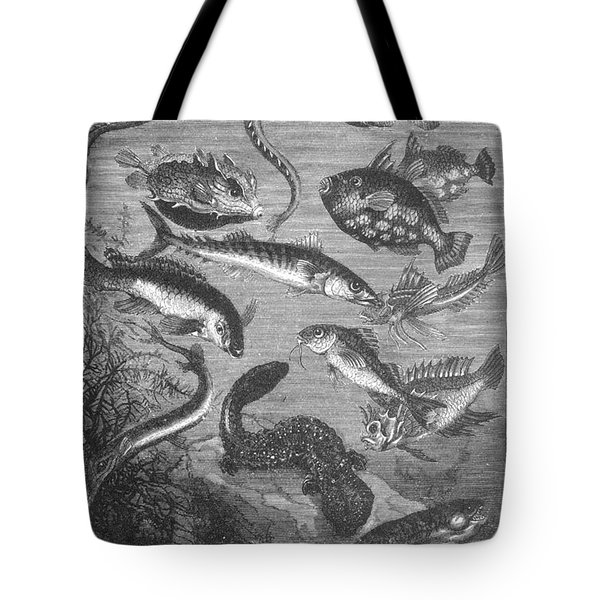 Verne: 20,000 Leagues Tote Bag by Granger