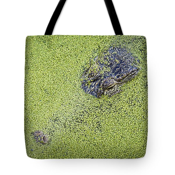 Alligator Untitled Tote Bag by Patrick M Lynch