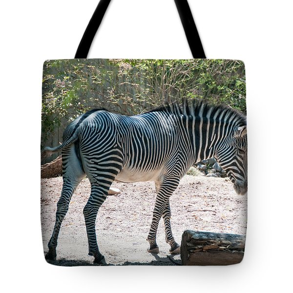 Lincoln Park Zoo In Chicago Tote Bag