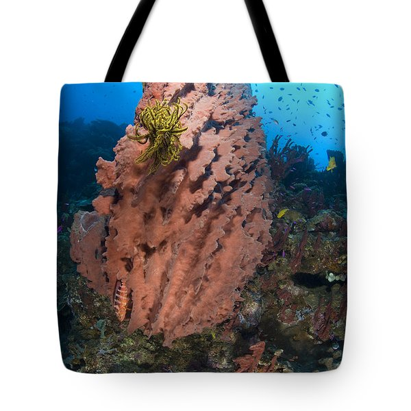 A Barrel Sponge With A Yellow Crinoid Tote Bag