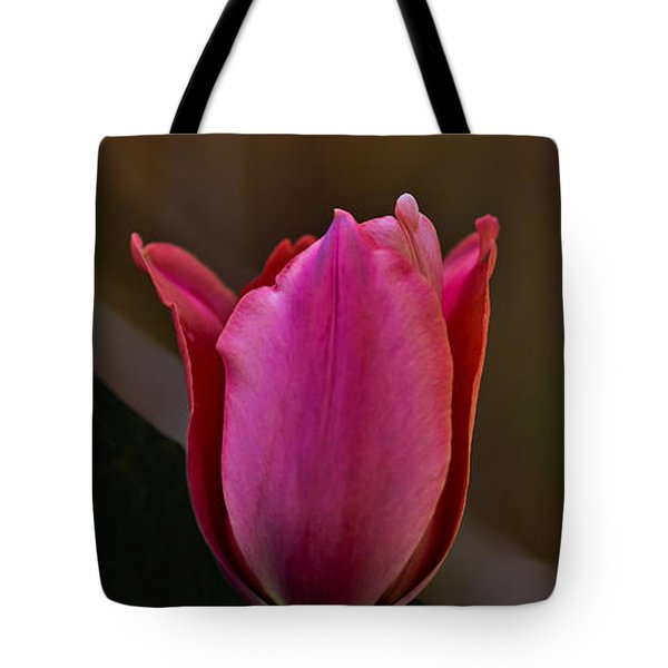 Tote Bag featuring the photograph A Beautiful Mess by Mitch Shindelbower