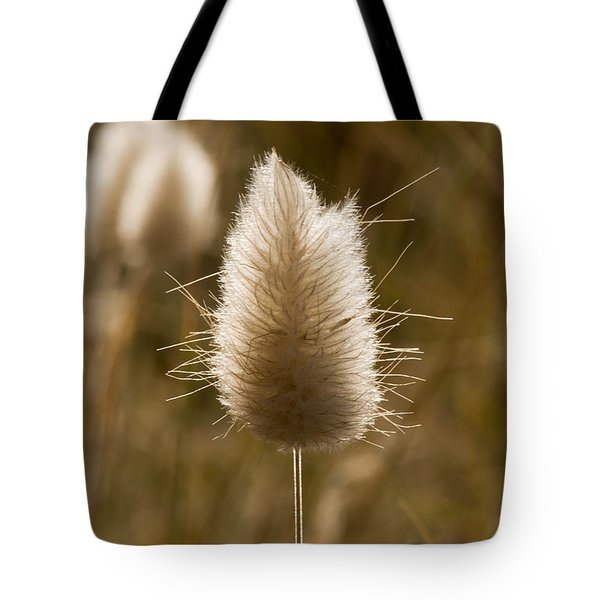A Beautiful Seed Pod With Beautiful Sun Reflection Tote Bag