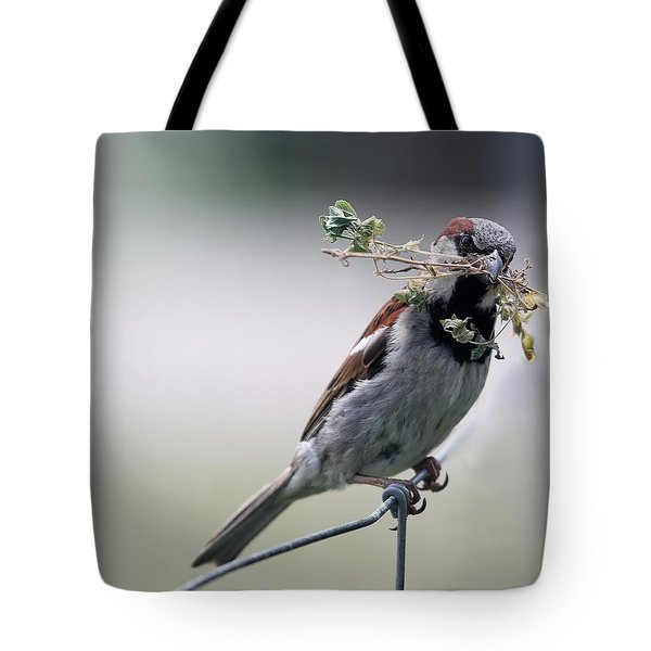 Tote Bag featuring the photograph A Bird And A Twig by Elizabeth Winter