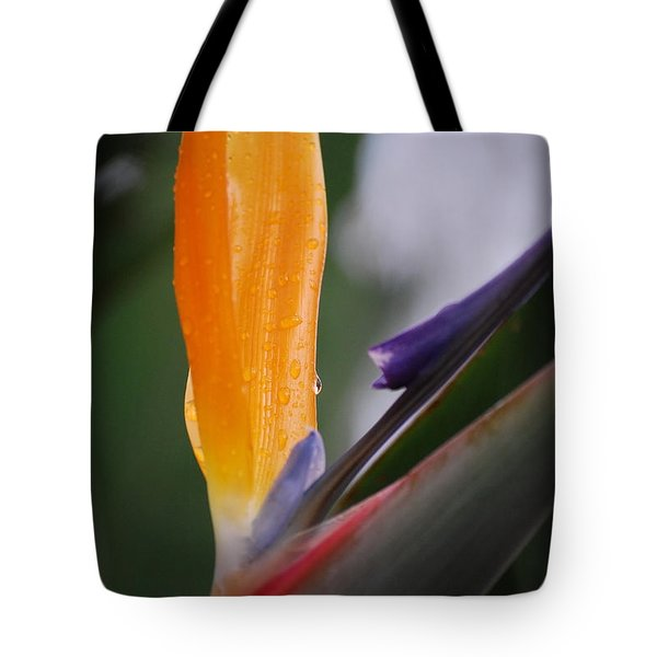 A Bird Of Paradise I Tote Bag