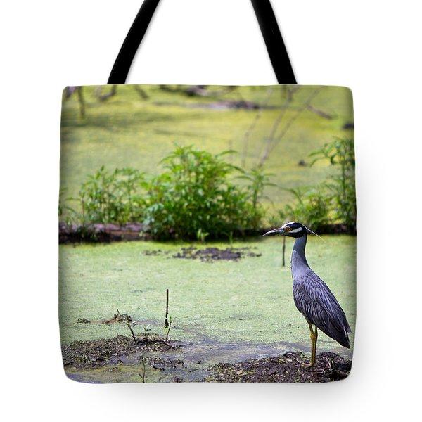 A Blue Bird In A Wetland -yellow-crowned Night Heron  Tote Bag by Ellie Teramoto