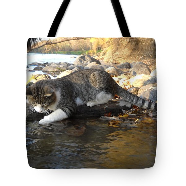 A Cat Goes Fishing Tote Bag
