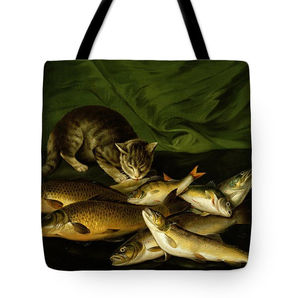 A Cat With Trout Perch And Carp On A Ledge Tote Bag by Stephen Elmer