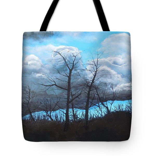 A Cloudy Day Tote Bag by Dan Whittemore