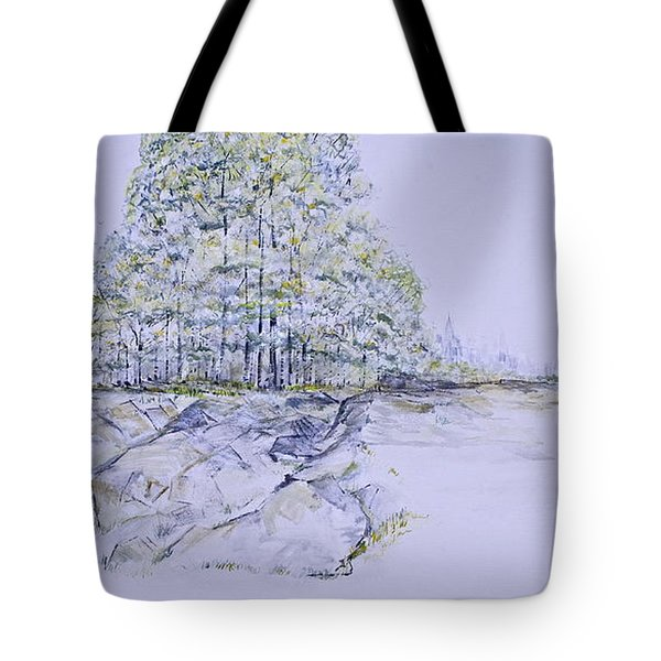 A Day In Central Park Tote Bag