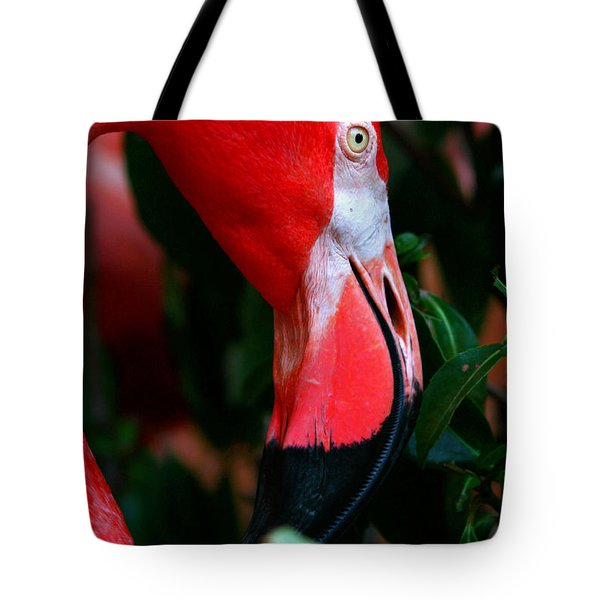 Tote Bag featuring the photograph A Delicate Shade Of Power by Lon Casler Bixby