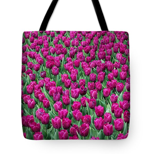 Tote Bag featuring the photograph A Field Of Tulips by Eva Kaufman