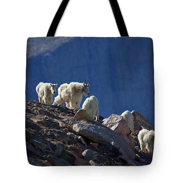 Tote Bag featuring the photograph The Field Trip by Jim Garrison
