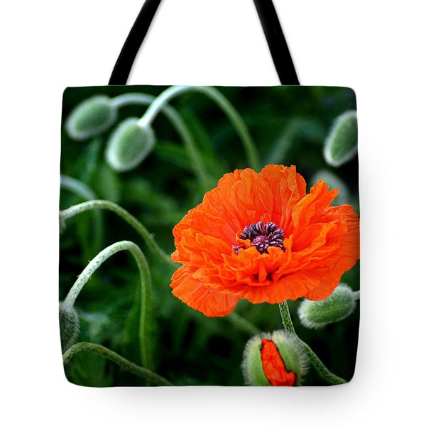 A Flower In Medusa's Hair Tote Bag