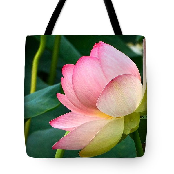 A Gentle Unravelling Tote Bag