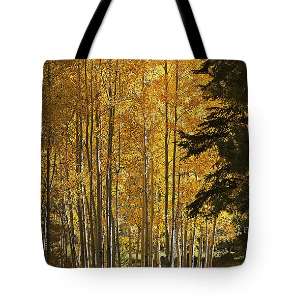 A Golden Trail Tote Bag by Phyllis Denton