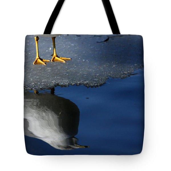 A Gull Reflects Tote Bag by Karol Livote