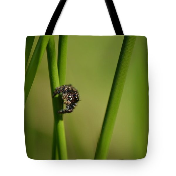 Tote Bag featuring the photograph A Jumper In The Grass by JD Grimes