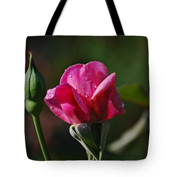 A Knockout Rose Tote Bag by Skip Willits