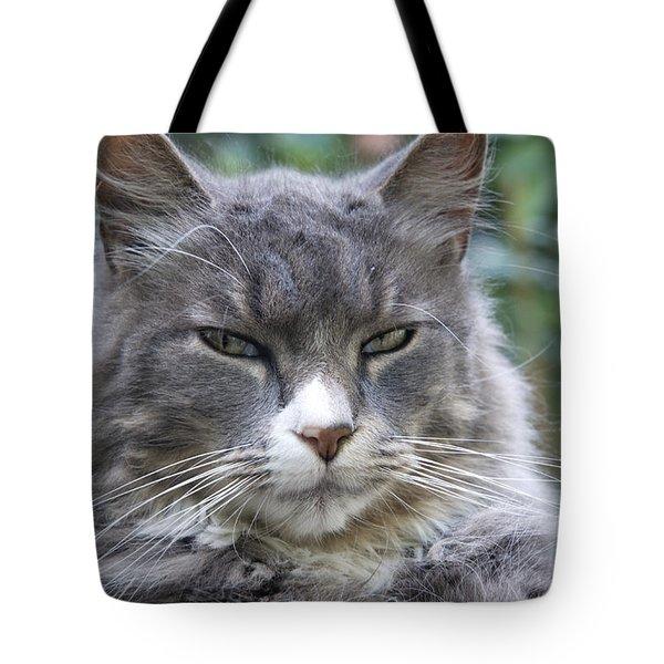 A Little Sceptical Tote Bag