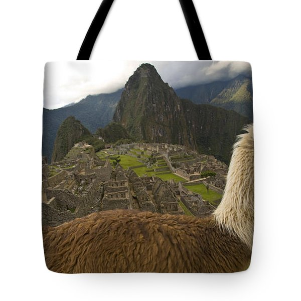 A Llama And Reconstructed Stone Tote Bag by Michael Melford