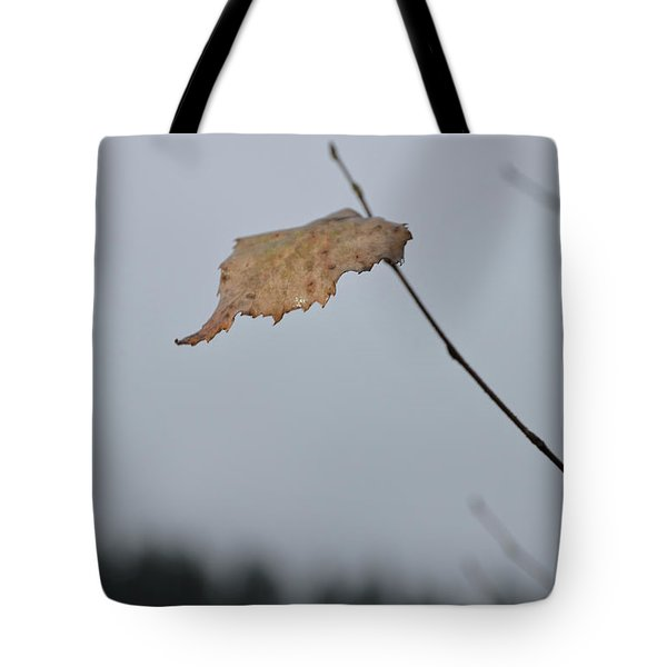 Tote Bag featuring the photograph A Lonely Leaf by Michael Goyberg