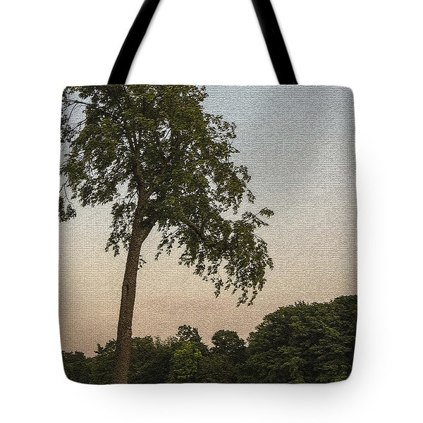 A Lonely Park Bench Tote Bag by Darleen Stry