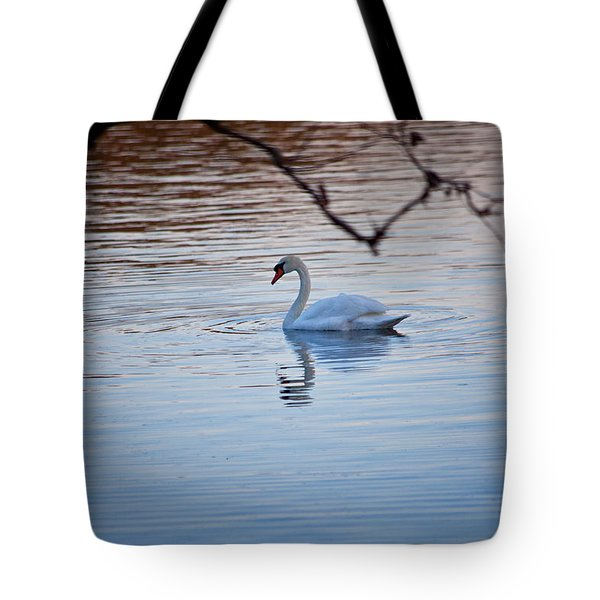 A Lonely Swans Late Afternoon Tote Bag by Karol Livote
