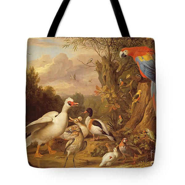 A Macaw - Ducks - Parrots And Other Birds In A Landscape Tote Bag