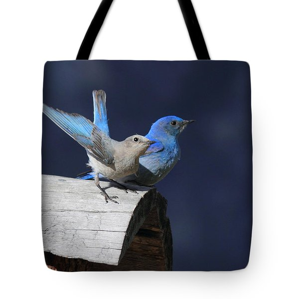 A Pair Of Bluebirds Tote Bag