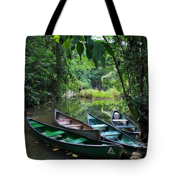 A Peaceful Place Tote Bag by Li Newton
