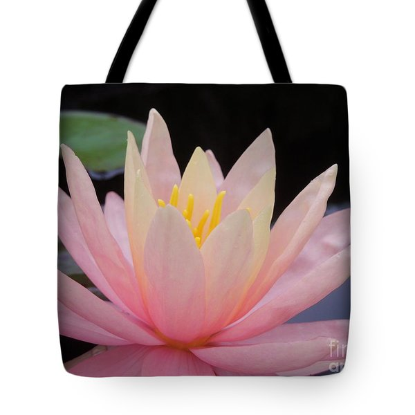 A Pink Water Lily Tote Bag