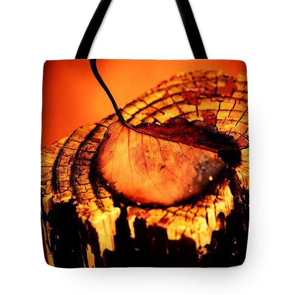 Tote Bag featuring the photograph A Pose For Fall by Jessica Shelton