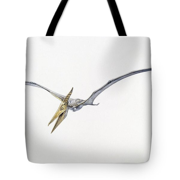A Pteranodon From The Cretaceous Period Tote Bag