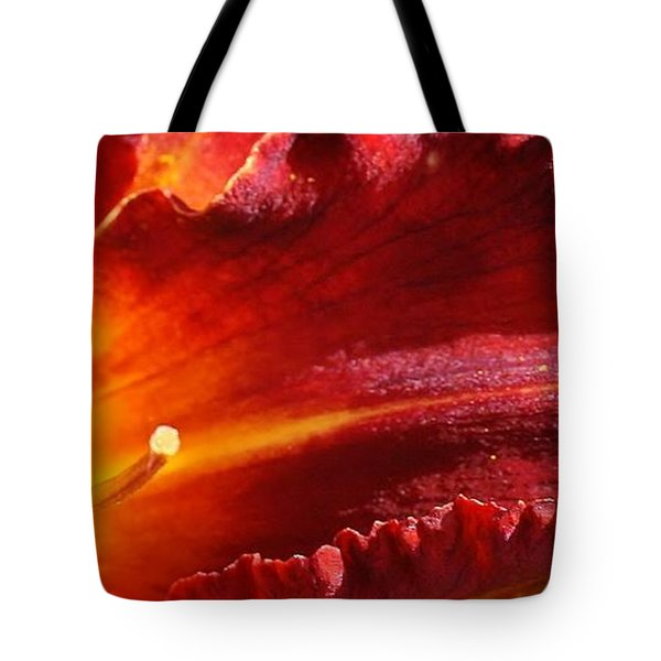 A Ray Of Beauty Tote Bag by Bruce Bley