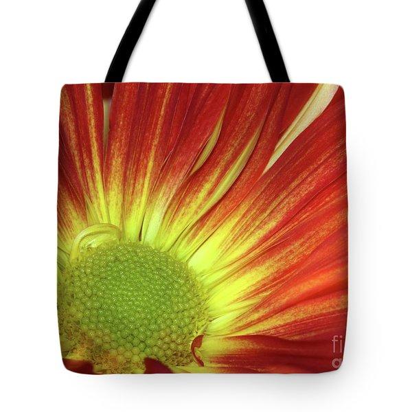 A Red Daisy Tote Bag by Sabrina L Ryan