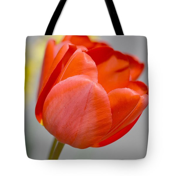 A Red Spring Tulip Flower Tote Bag