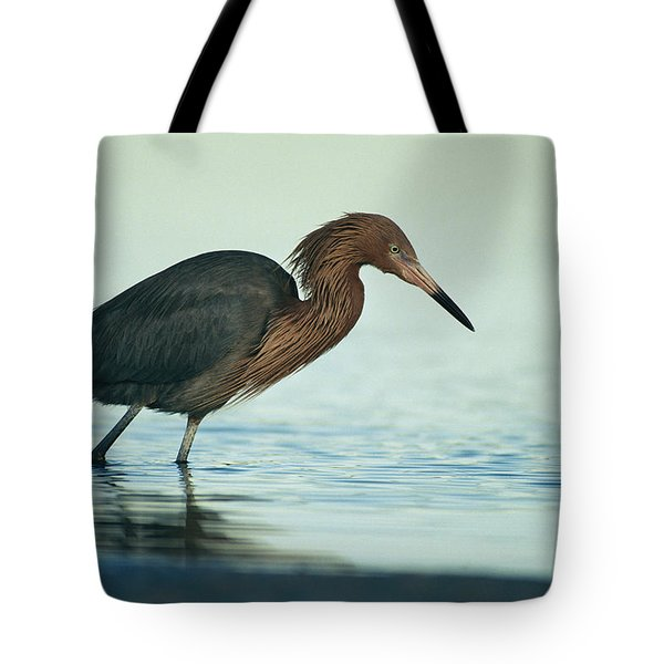 A Reddish Egret Wades In A Saltwater Tote Bag